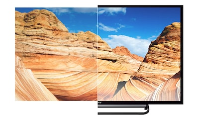Lifelike pictures on 81 cm (32) TV from Sony