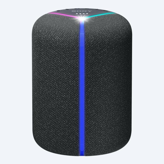 Sony Portable Wireless Speakers with Wi-Fi & Bluetooth   Sony IN