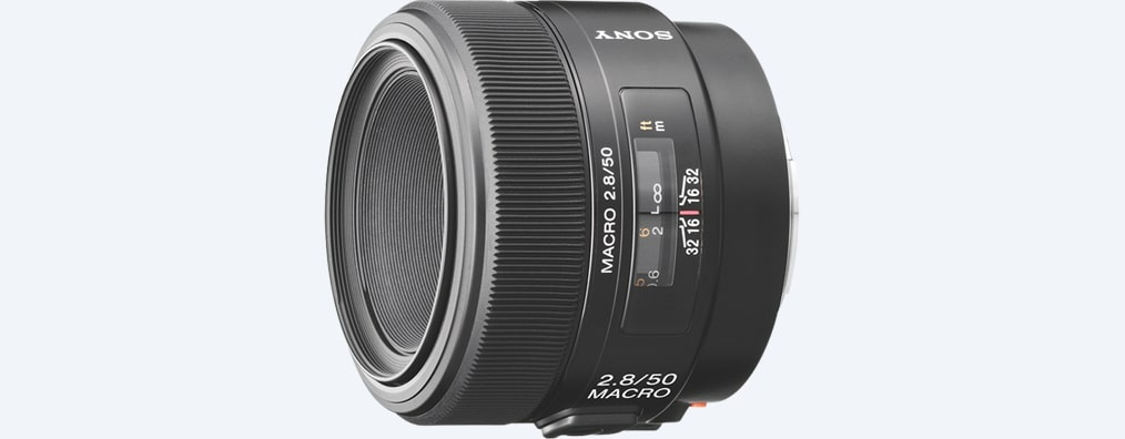 Images of 50 mm F2.8 Macro