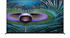 TV screen showing 8K picture detail in a water droplet and feathers